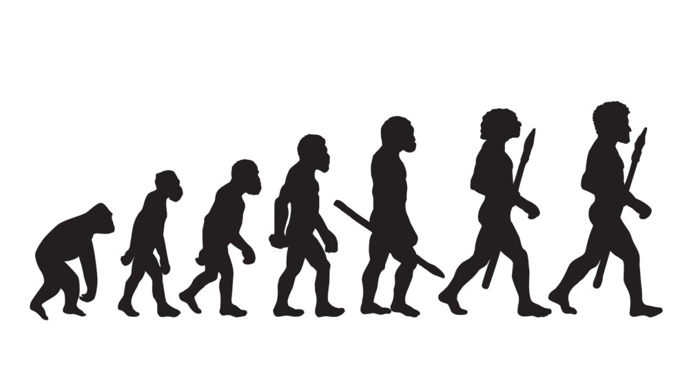 Evolution: Fact or Fiction? Image