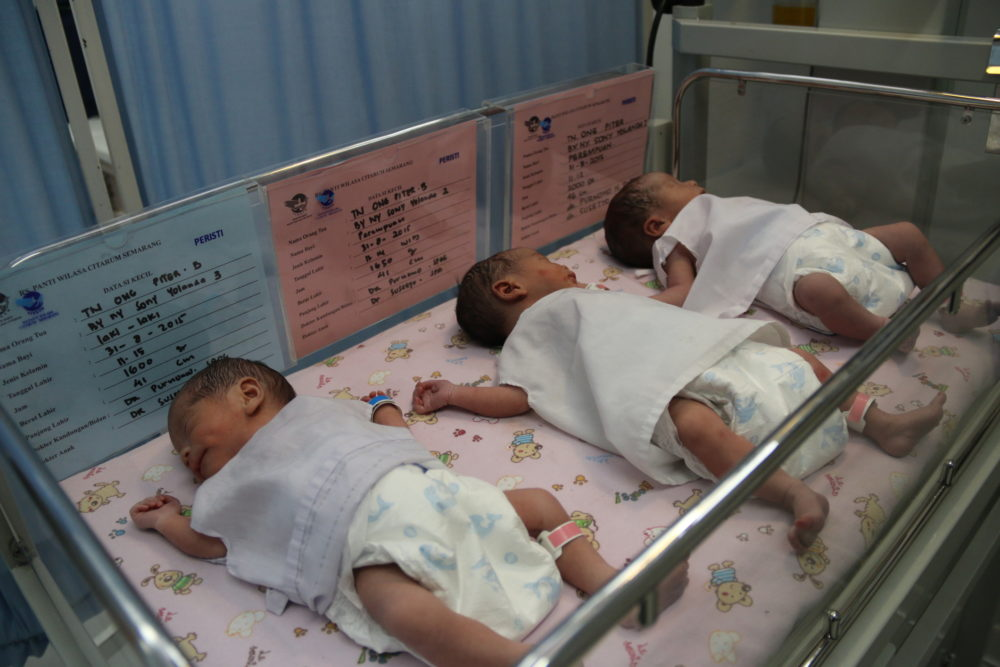 Three Miracle Births!