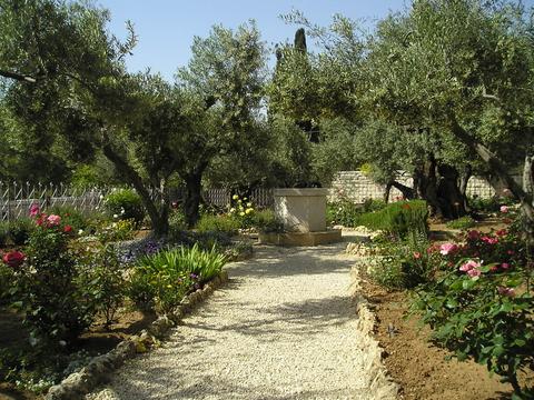 Revelations in the Garden Image
