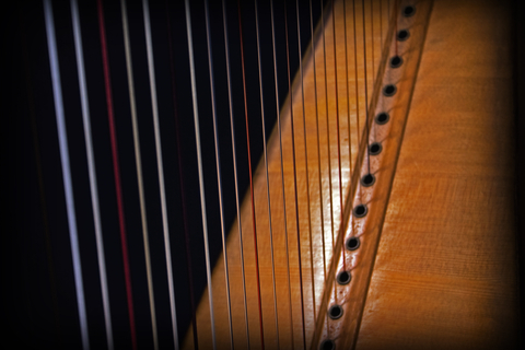 The Harp of 10 Strings!